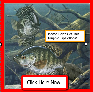 Crappie Catching Secret – Employ an Enemy Agent