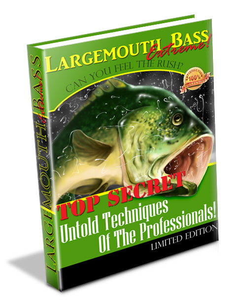 Bass Fishing Tips – Downloadable Guide