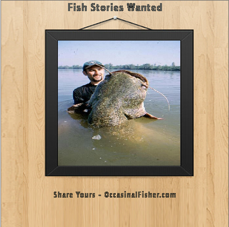 Fish Stories Wanted