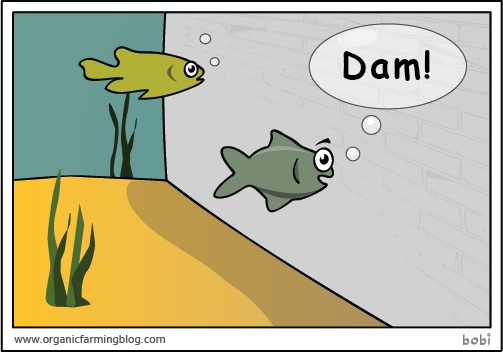 Fishing Funnies - Occasional Fisher