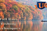 Bass Fishing in the Fall by Mike Iaconelli