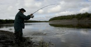 River Fishing Tips: How To Find Bass In Rivers